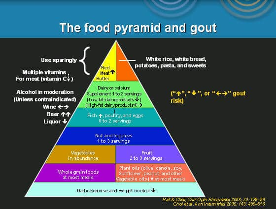 The food pyramid and gout, natural treatments, naturopathic doctor Michigan